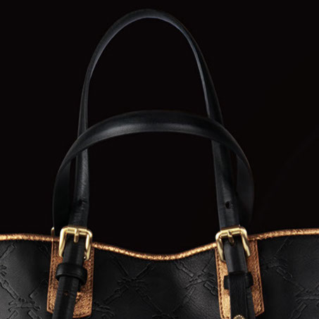 Visuel LM Collection Longchamp